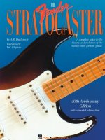 The Fender Stratocaster Book